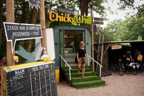 chick-2